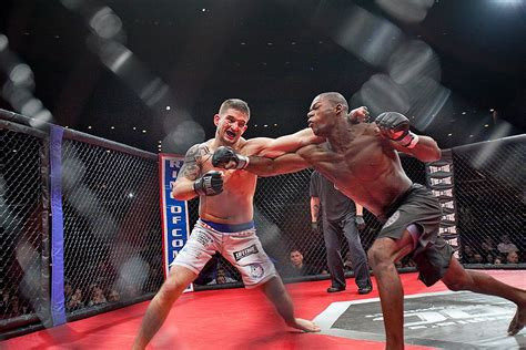 Mixed Martial Arts Catches On With the Internet Generation